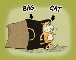 Cat's Out of the Bag Cartoon